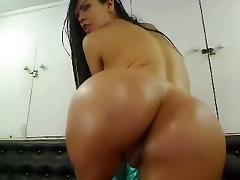 Beauty, Amateur, Beauty, Hardcore, Latina