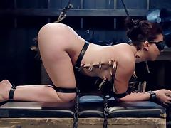 how many clothespins can she take? tube porn video