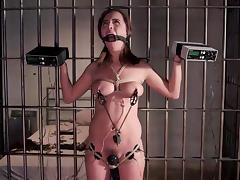 tied up and tortured in jail tube porn video