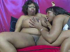 Fat Ebony, BBW, Chubby, Chunky, Fat, Lick