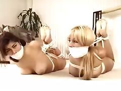 Cuties roomates nude hogtied