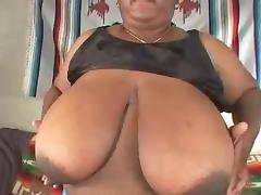black bbw boobs