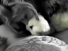 fur coat blowjob