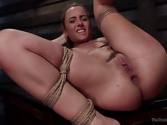 helpless roxanne gets bonded and fucked tube porn video