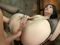 free Anal Creampie porn
