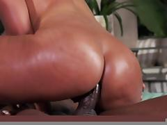 Big Wet Butts: Three Times the Booty. Bridgette B, Kelly Divine, Phoenix Marie, Keiran Lee, Prince Yashua tube porn video