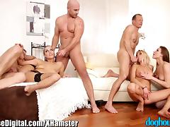 DogHouse Euro Babes Swingers Orgy