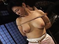 Asian Granny, Asian, BDSM, Big Tits, Bitch, Boobs