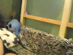 chinese stewardess homemade porn tube video