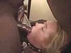 Black cock slave