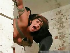 Hardcore s and m and brutal punishement part4 tube porn video