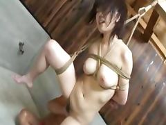Chinese, Bondage, Bound, Chinese, Oriental, Sex