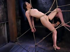 tangled in the ropes