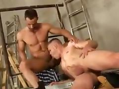 Hunks tube porn video
