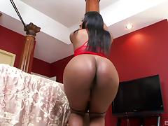 Ebony babe with a huge black booty enjoys the doggy kind of screwing porn tube video