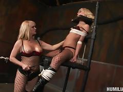 Lesbian bondage session quickly turns into the wild pussy pounding