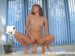 Babe toys her hairy pussy