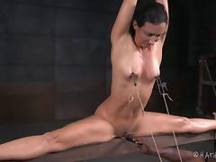 Bound, Babe, BDSM, Bondage, Bound, Cute