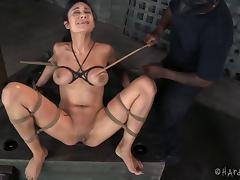 Bound, Adorable, BDSM, Bondage, Bound, Brunette