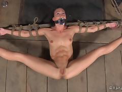 Bondage, BDSM, Bondage, Bound, Fetish, Pussy