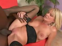 Cougar, Cougar, Interracial, Big Black Cock