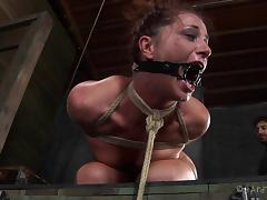 Hot babe Cici Rhodes almost cries during the gruesome bondage session porn tube video