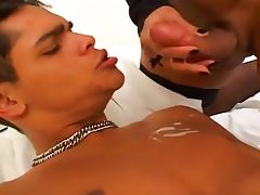Dark Haired Shemale Pounding Her BF tube porn video
