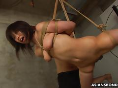 Tied up to a rope and sucking on the fellas porn tube video