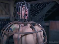 Hottie without hair is now just a prisoner in the BDSM dungeon tube porn video