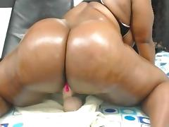squirting rider porn tube video