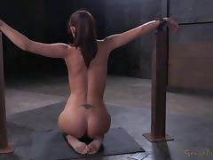 Bianca Breeze never thought that she'd experience something like this!