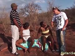 wild african safari sex orgy porn tube video
