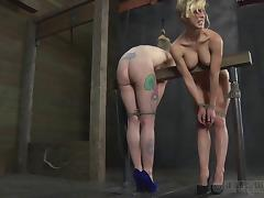 Two blonde bitches eat each other's twat while being tied up porn tube video