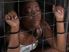 Black senorita sucking the white dick while imprisoned in the cage