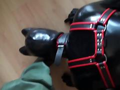 Rubber Puppy Play In Rubber Waders porn tube video