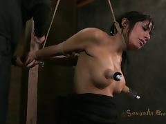Brunette in bondage BDSM having her big tits pegged