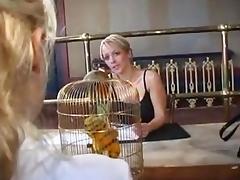 Piss flix 05 - glimpse 2005
