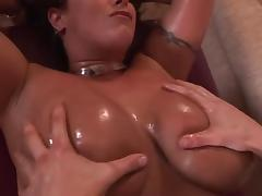 An Assortment of Buxom Knockers porn tube video