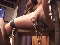 Ruda specialist of torture dick