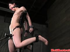 Rough, BDSM, Brunette, Fetish, HD, Rough