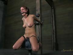 Charming brunette natural tits pegged lovely in BDSM torture