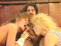 Lynn LeMay, Natasha Skyler, Ron Jeremy