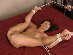 BDSM, BDSM, Brunette, Small Tits, Softcore