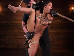 rough bdsm pleasures for this chocolate pussy porn tube video