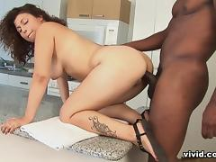 Doin My Black Family - Vivid porn tube video