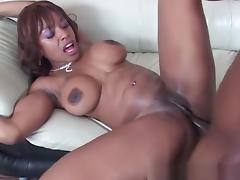 black porn star ayana angel