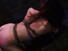 Bound, Babe, BDSM, Bondage, Bound, Brunette