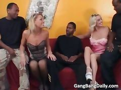 Horny blonde chicks suck big black cock