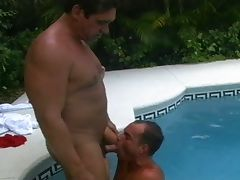 Horny muscled hunks cock sucking queer encounter