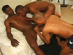 Black gays orgy
